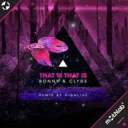 Bonny & Clyde – That Is That Is