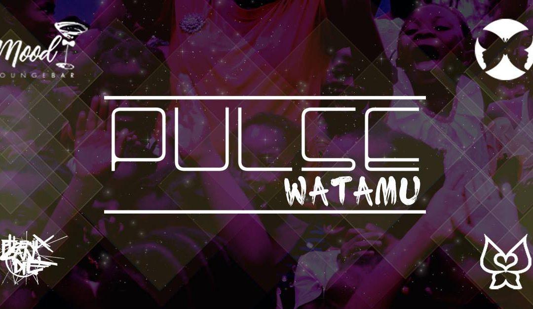 Pulse – Watamu – W / Phoenix Can Die (Live)